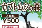 カブトムシの森 明日開催します! 立川立飛店